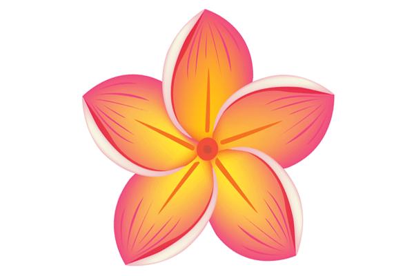 Цветы, растения (магазин) Пушкино