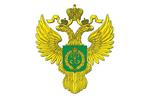 Центрлес Пушкино
