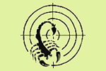 Скорпион (пейнтбольный клуб) Пушкино